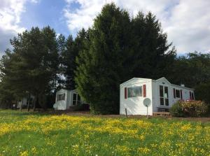 Eifel-Ferienhaus mit Frühlingsblumenwiese auf dem Ferienhof Thommes
